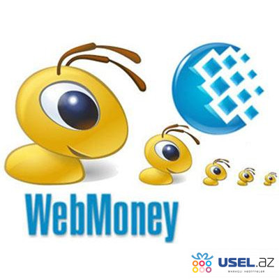 Webmoney в Баку,  продажа WMZ-карточки (WMZ,WMR)