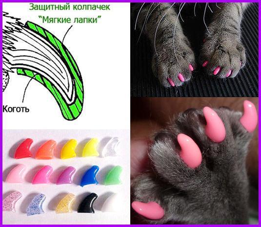 Антицарапки - накладные силиконовые колпачки для кошек 20 штук